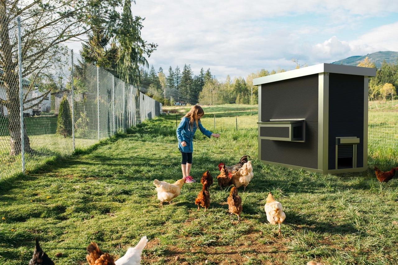 Hygienischer Hühnerstall aus Edelstahl